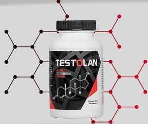 Testolan 4